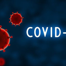 Coronavirus Pandemic Tax Update