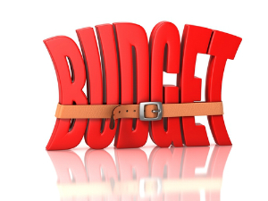 IRS 2015 Budget